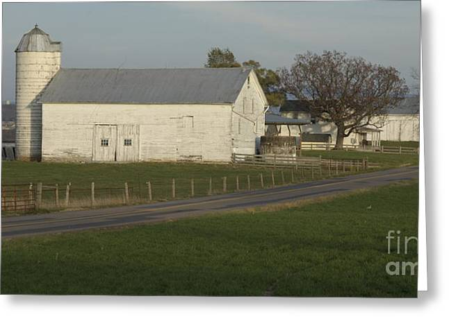 Shenandoah Valley Farm Panorama Greeting Card by Anna Lisa Yoder
