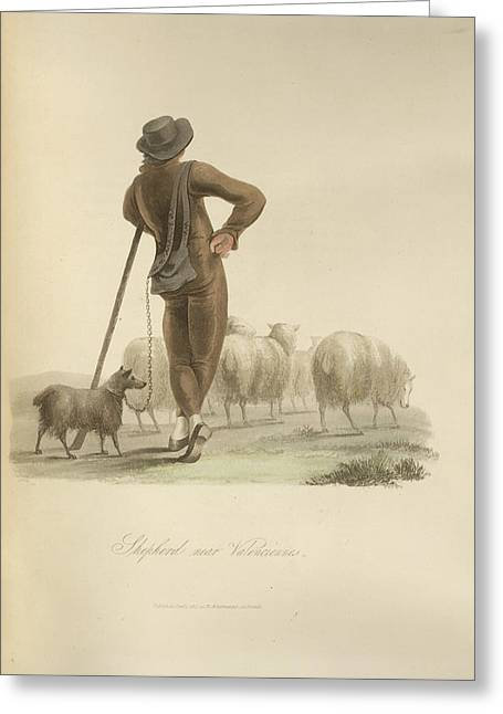 Shepherd Near Valenciennes Greeting Card by British Library