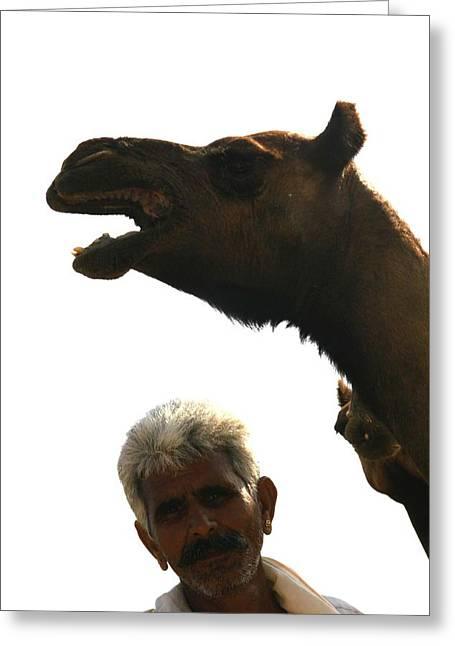 Shepherd Of Camels Greeting Card by Renato Sensibile