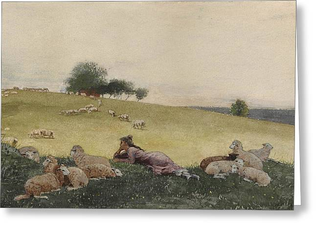 Shepherdess Of Houghton Farm  Greeting Card by Celestial Images