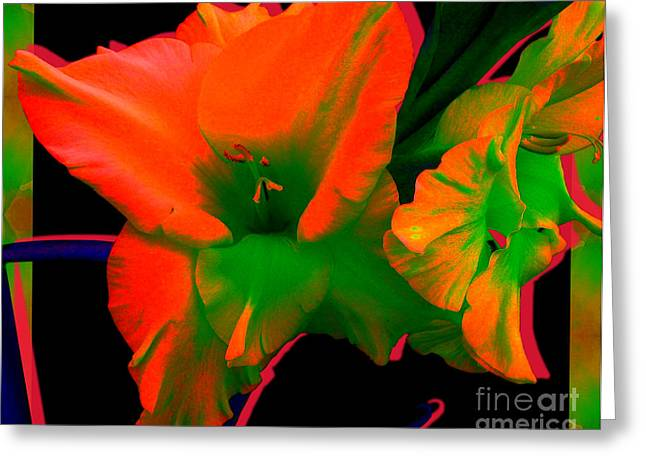 Sherbert Gladiolus Greeting Card