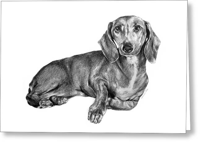 Sherlock The Dachshund Greeting Card by Kinga Baransky