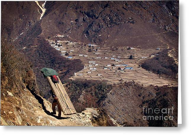 Sherpa Greeting Card by Tim Hester