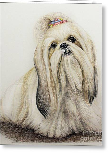 Shih Tzu Greeting Card by Lena Auxier