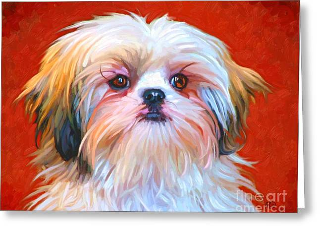 Shih Tzu Painting Greeting Card by Iain McDonald