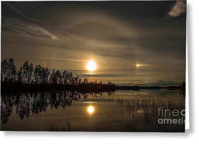 Greeting Card featuring the photograph shine like a Halo by Rose-Maries Pictures