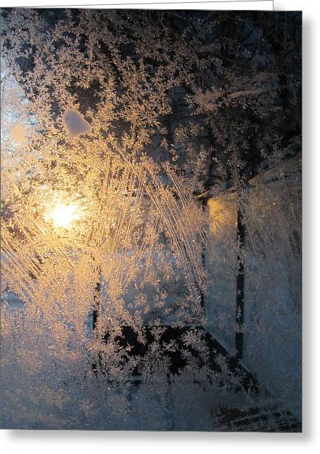 Shines Through And Illuminates The Day Greeting Card