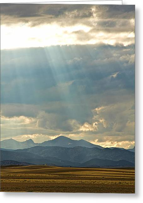 Shining Down Greeting Card by James BO  Insogna