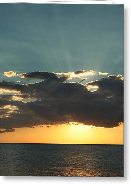 Shining With Love Greeting Card by Laurie Search