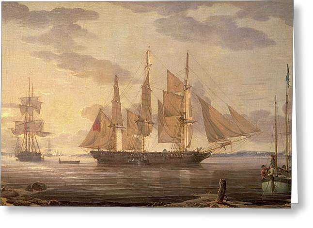 Ships In Harbor Signed And Dated Lower Right R Greeting Card by Litz Collection