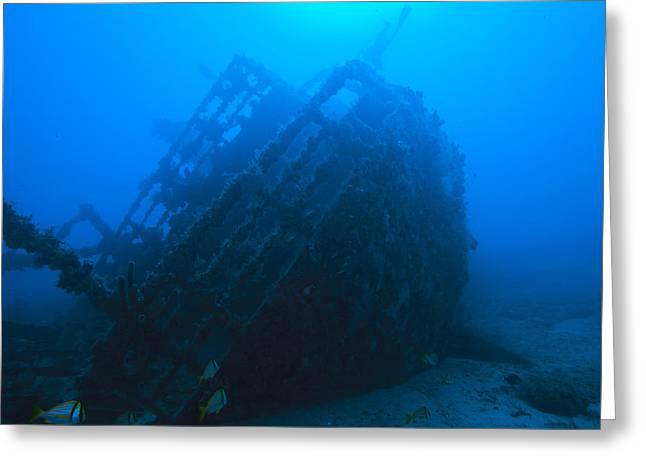 Shipwreck On Govenors River Walk Greeting Card