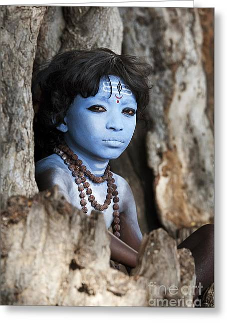 Shiva Boy Greeting Card by Tim Gainey
