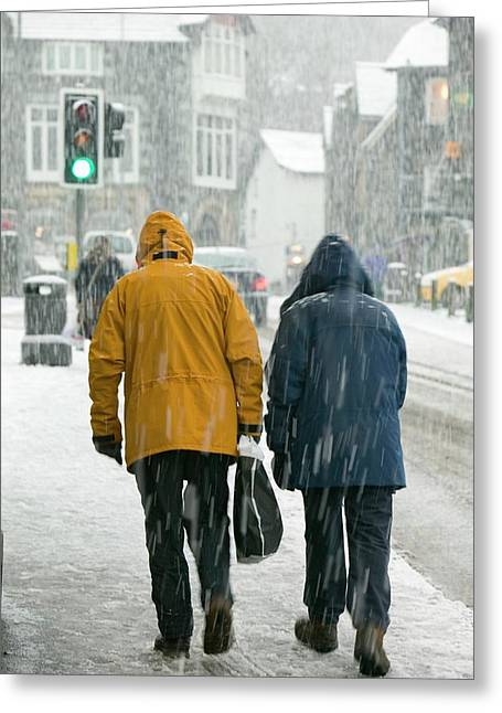 Shoppers Trudging Through Snow Greeting Card by Ashley Cooper