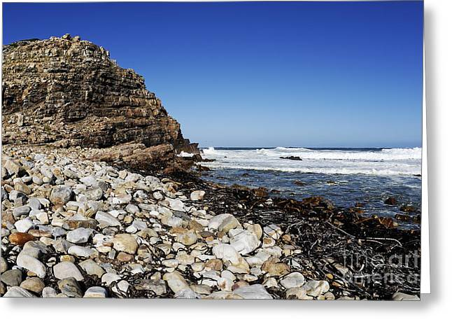 Shore At Cape Of Good Hope Greeting Card by Sami Sarkis