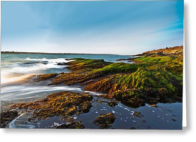 Shore Greeting Card by Jonathon Shipman
