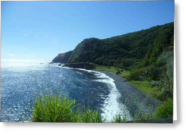 Shore Line In Paradise Greeting Card by Clarissa Selders