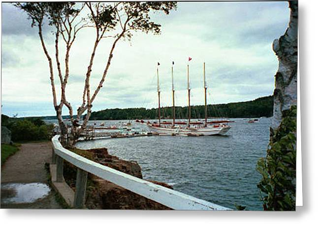 Shore Path In Bar Harbor Maine Greeting Card