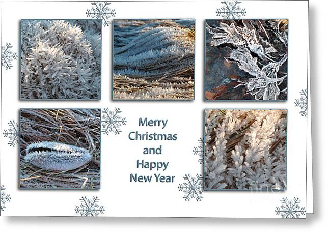 Greeting Card featuring the photograph Shoreline Christmas by Randi Grace Nilsberg