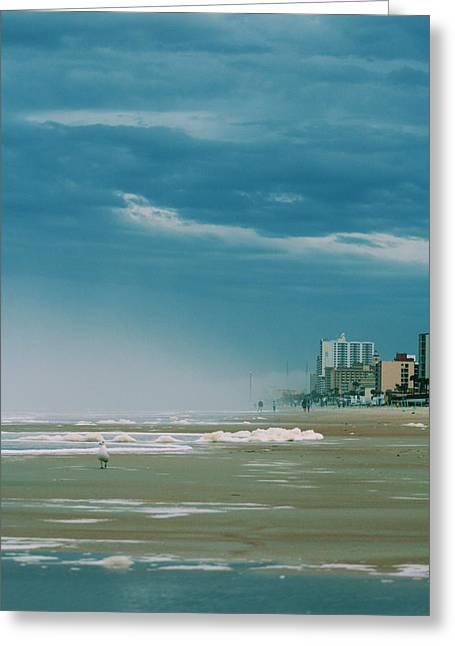 Shoreline Daytona Greeting Card by Paulette Maffucci
