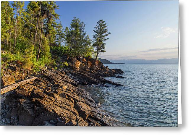 Shoreline Of Flathead Lake Receives Greeting Card by Chuck Haney