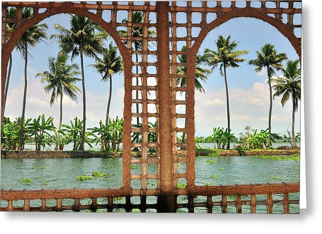 Shoreline Of The Kerala Backwaters Greeting Card