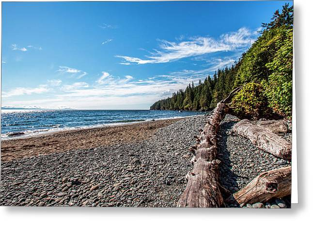 Shoreline Of Vancouver Island Greeting Card by James White