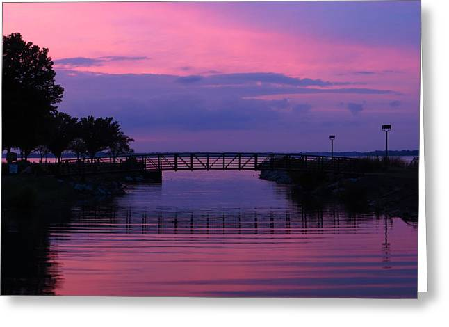 Shoreline Park At Dusk Greeting Card