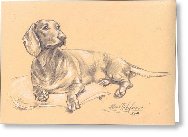 Short-haired Dachshund On A Pillow Greeting Card