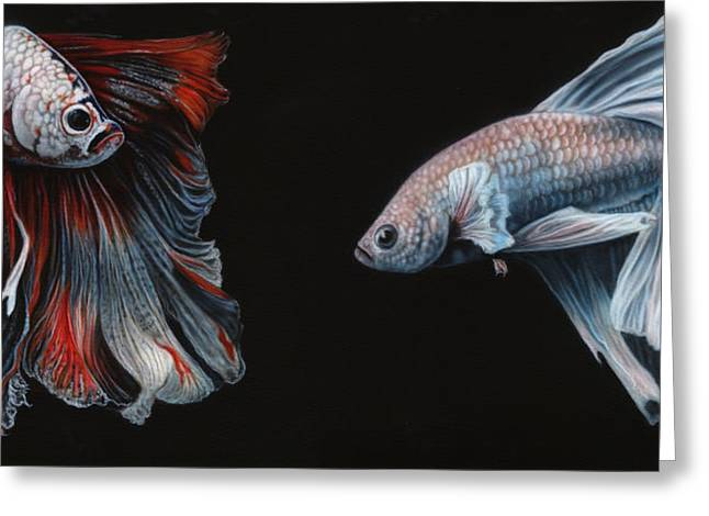 Siamese Fighting Fish  Greeting Card by Wayne Pruse