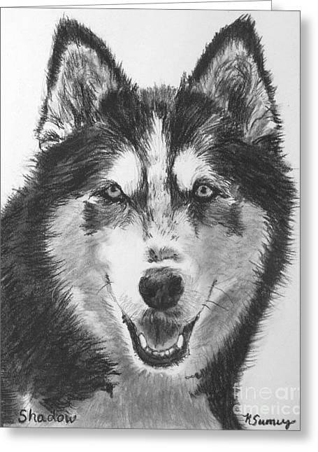 Siberian Husky Drawing Greeting Card