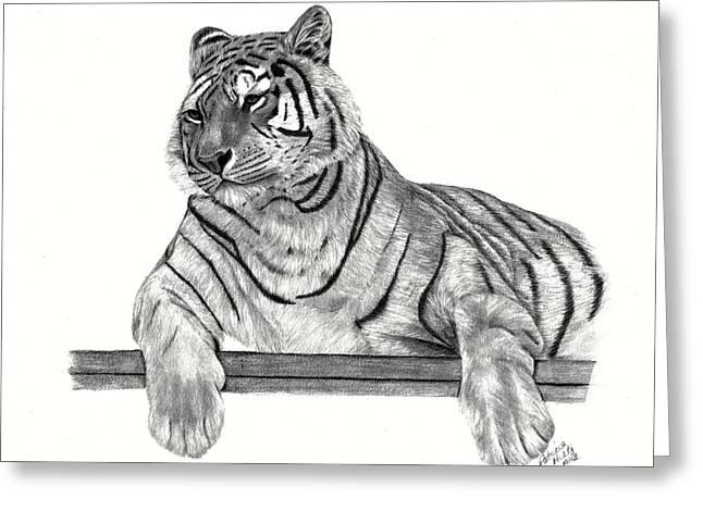 Siberian Tiger Greeting Card by Patricia Hiltz
