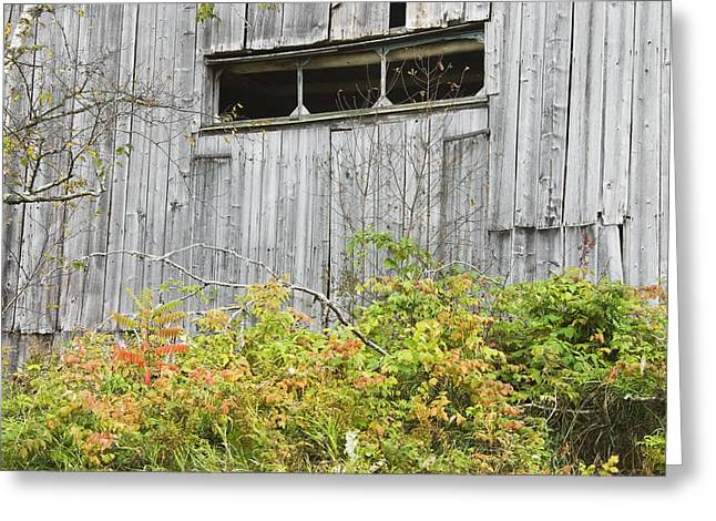 Side Of Barn In Fall Greeting Card
