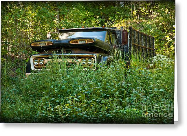 Sid's Old Truck Greeting Card by Lena Wilhite