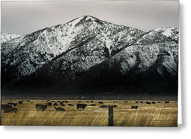 Sierra Nevada Mountains Near Lake Tahoe Greeting Card