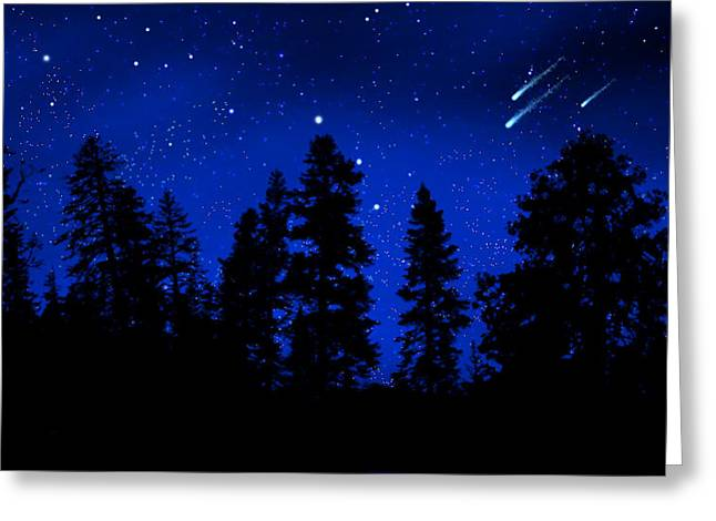 Sierra Stars Wall Mural Greeting Card by Frank Wilson