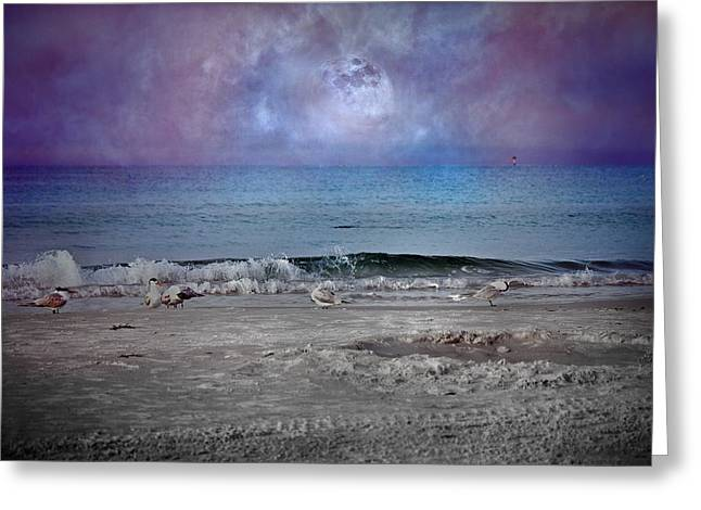 Siesta Key Moon In My Pocket Greeting Card by Betsy C Knapp