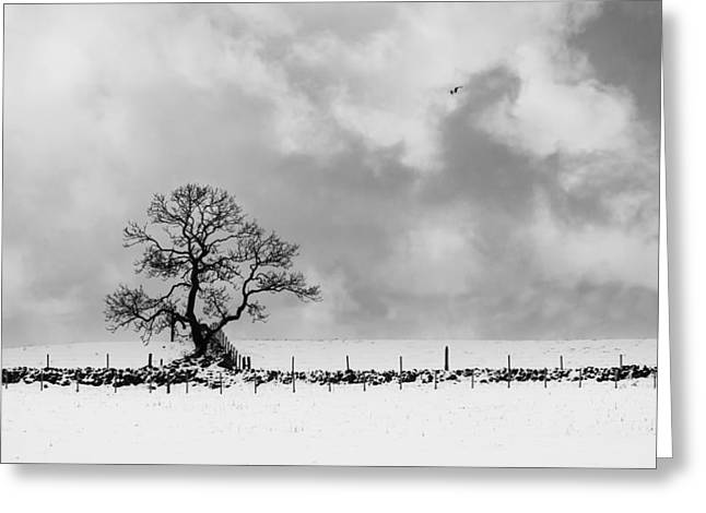 Sign Of Winters End Greeting Card