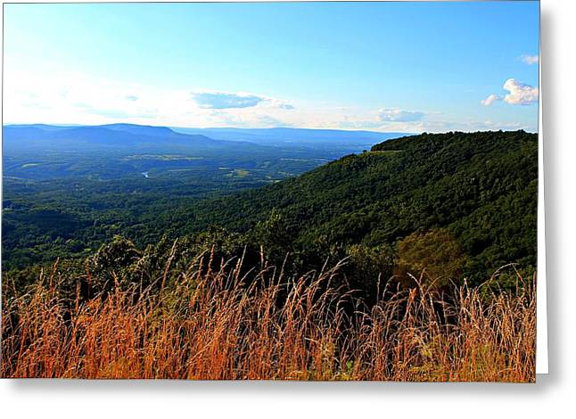 Greeting Card featuring the photograph Signal Knob Overlook by Candice Trimble