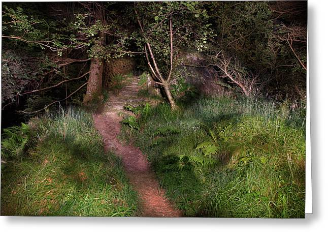 Signal Rock By Night Glencoe Greeting Card by Niall McWilliam