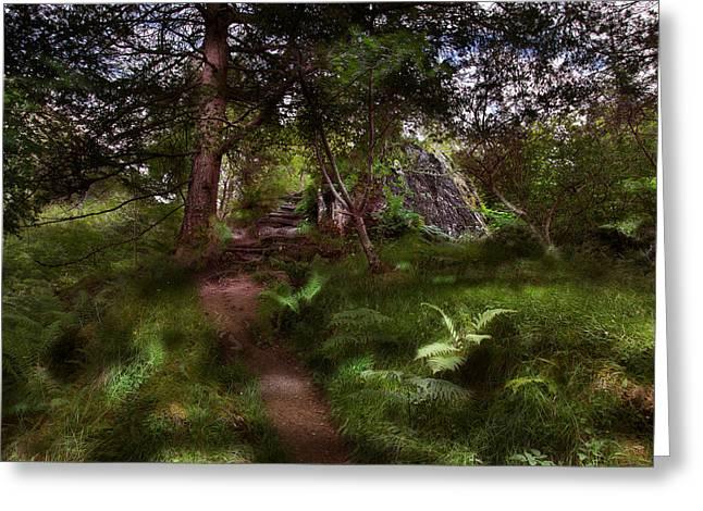 Signal Rock II Glencoe Greeting Card by Niall McWilliam