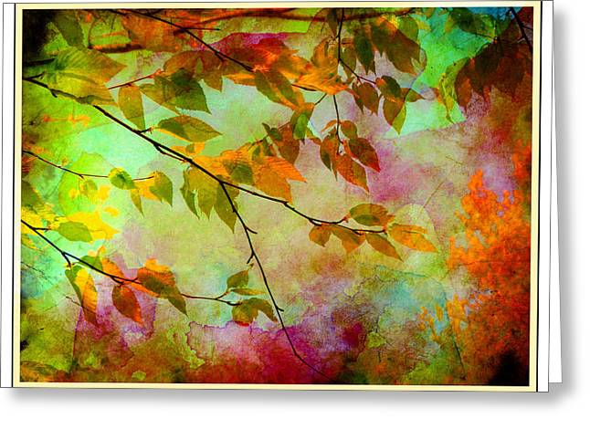Signs Of Autumn Greeting Card by Nina Bradica