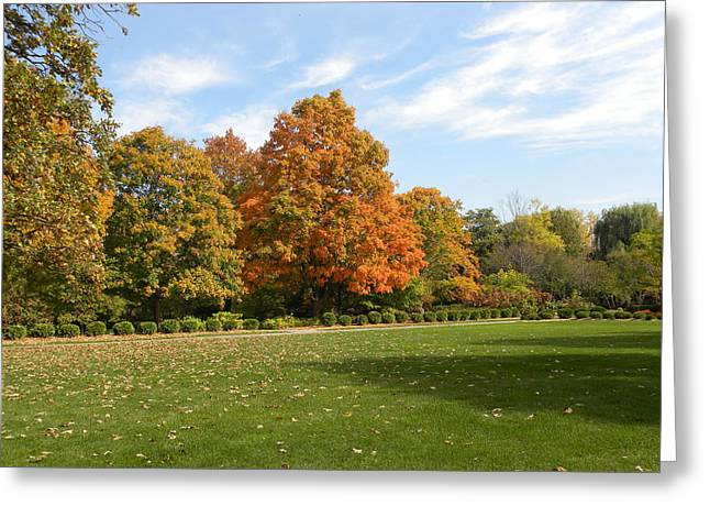 Greeting Card featuring the photograph Signs Of Fall by Teresa Schomig