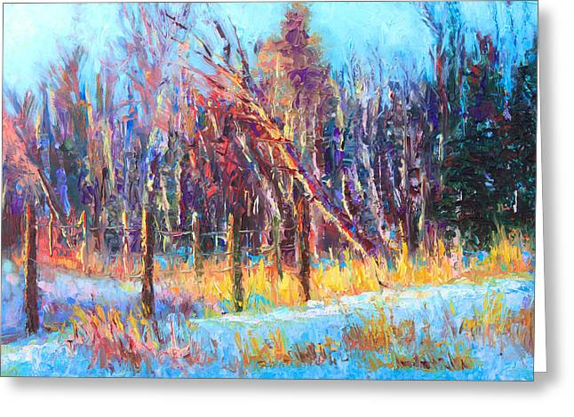 Signs Of Spring - Trees And Snow Kissed By Spring Light Greeting Card