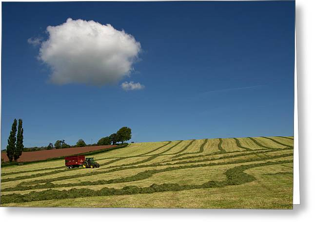 Silage Collection Greeting Card