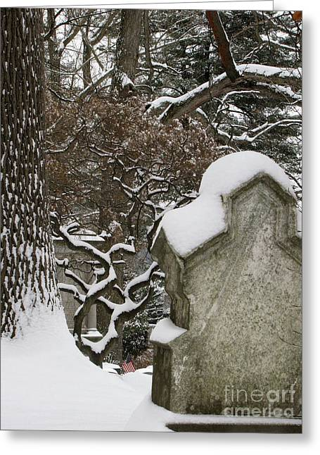 Greeting Card featuring the photograph Silence by Melissa Stoudt