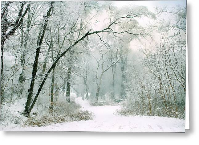 Silence Of Winter Greeting Card by Jessica Jenney