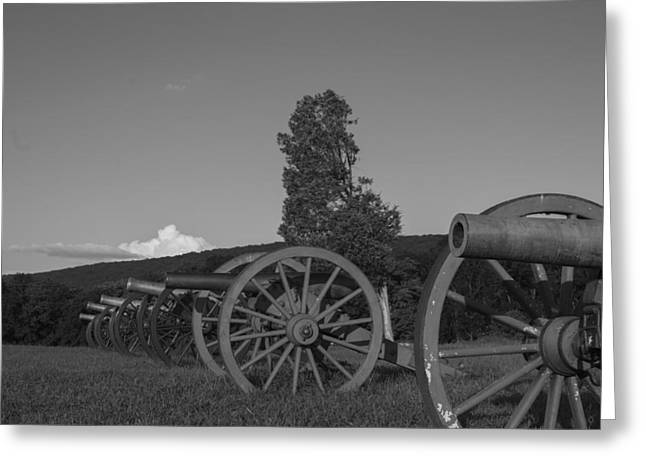 Silent Cannons Greeting Card by Michael Williams