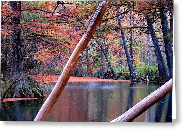 Greeting Card featuring the photograph Silent Colors by David  Norman
