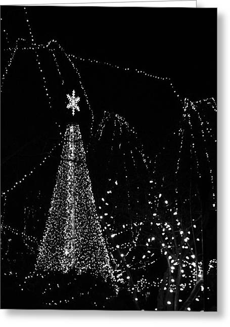 Silent Night Greeting Card by Dan Sproul