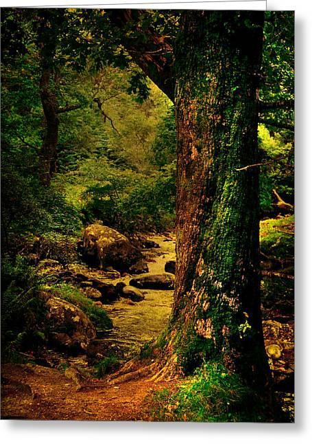 Silent Storyteller. Glendalough. Ireland Greeting Card by Jenny Rainbow